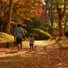 運動不足解消には散歩が効果的!初心者のための身体に負担が少ない歩き方もご紹介!
