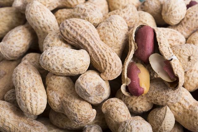 20151029nuts