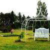 庭の雑草対策にはどんなものがあるの?素人でも簡単にできる方法3選!
