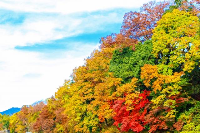 みんなで行きたい!関東で登山が楽しめる紅葉の名所はココがおすすめ!