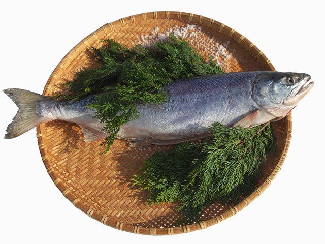 美味しい新巻鮭を楽しもう!さばき方や塩抜きと保存方法について